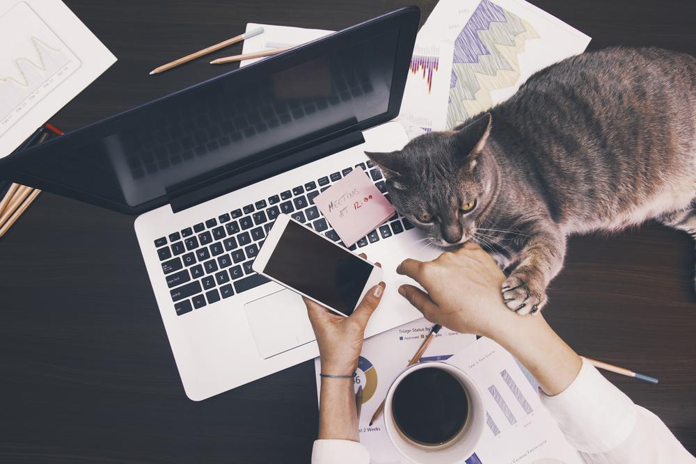 12 maneras poco convencionales para aumentar la productividad de tus colaboradores