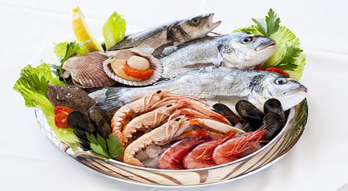 6 pescados del mar peruano ricos en proteínas