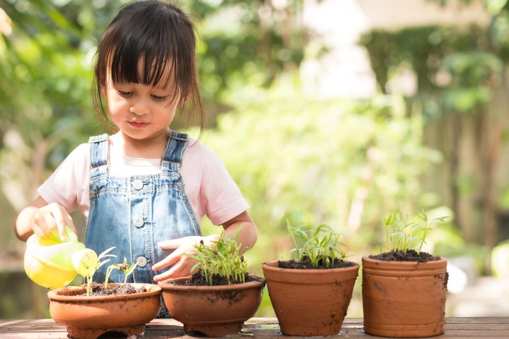 consejos para proteger el medio ambiente con tus hijos
