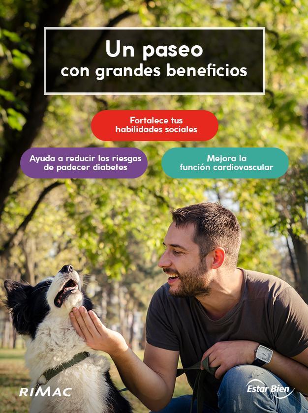 beneficios de sacar a pasear a los perros
