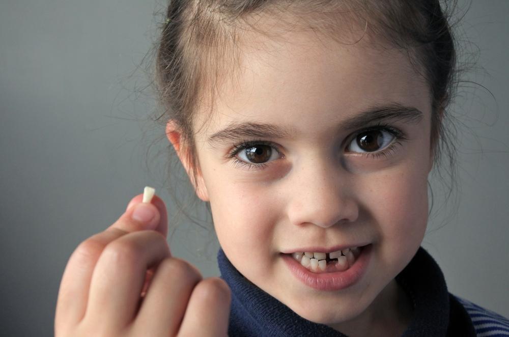 ¿Por qué no debes tirar los dientes de leche de tus hijos?