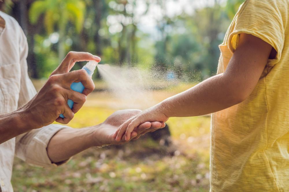 cómo eliminar zancudos en verano