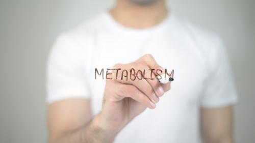 ¿Cuánto sabes sobre el metabolismo?: Conoce los mitos, y verdades y cómo activarlo
