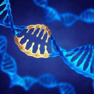 CRISPR-Cas9: ¿cómo logramos editar el ADN?
