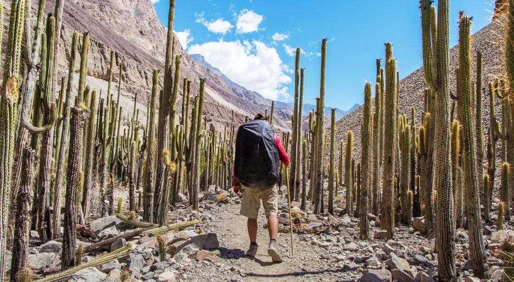 7 rutas para que disfrutes del paisaje en Arequipa