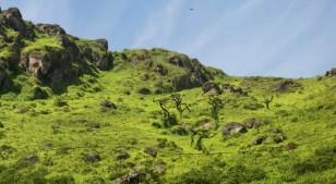 3 lugares cercanos a Lima para incursionar en el trekking