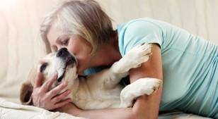 Los beneficios de tener una mascota en la tercera edad