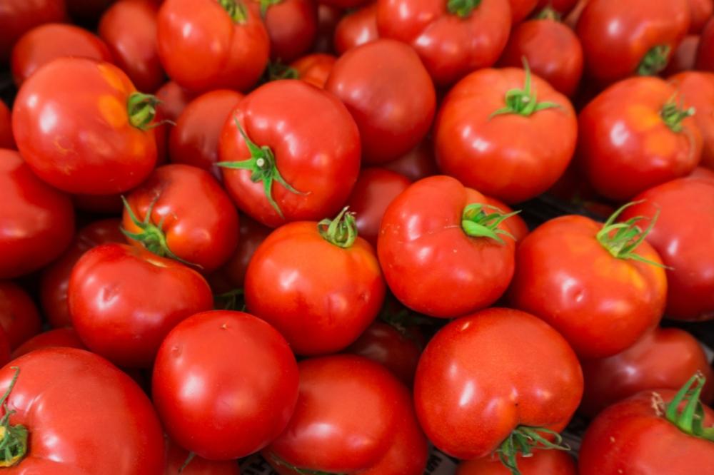 El consumo de tomate protege tus retinas del daño causado por la exposición solar durante el verano